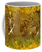 Young Male Buck Coffee Mug