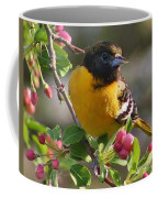 Young Male Oriole Coffee Mug