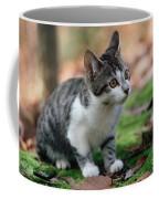 Young Manx Cat Coffee Mug