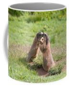 Young Marmots Coffee Mug
