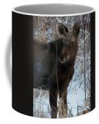 Young Moose 4 Coffee Mug