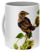 Young Redwing In The Wind Coffee Mug