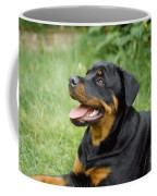 Young Rottweiler Coffee Mug