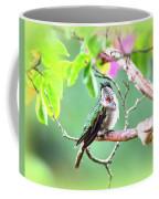 Img_ 6761  - 10x8 Coffee Mug