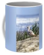 Young Seagull No. 2 Coffee Mug