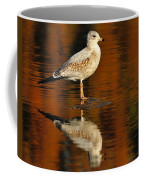 Youthful Reflections Coffee Mug by Tony Beck
