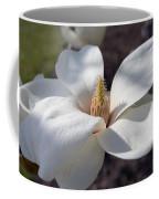 Yulan Magnolia  4591 Coffee Mug