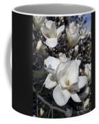 Yulan Magnolia  4753 Coffee Mug