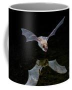 Yuma Myotis Bat Coffee Mug