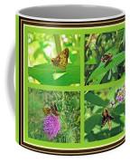 Zabulon Skipper Butterfly - Poanes Zabulon Coffee Mug
