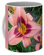 Zagora Daylilies Coffee Mug