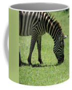 Zebra Eating Grass Coffee Mug
