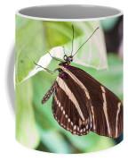 Zebra Iv Coffee Mug