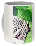 Zebra Long-wing Close-up Coffee Mug