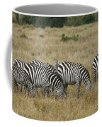 Zebra On Masai Mara Plains Coffee Mug