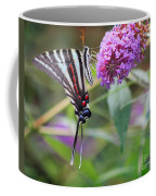 Zebra Swallowtail Butterfly On Butterfly Bush  Coffee Mug