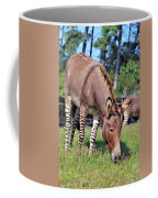 Zedonk Or Zebroid Coffee Mug