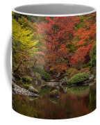 Zen Garden Reflected Coffee Mug