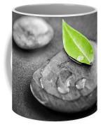 Zen Stones Coffee Mug by Elena Elisseeva