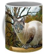 Zing The Cat In The Fall Coffee Mug