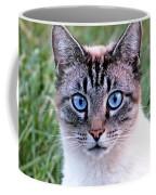 Zing The Cat Looking At Us Coffee Mug