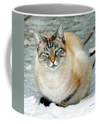 Zing The Cat On The Porch In The Snow Coffee Mug
