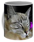 Zing The Cat Sleeping Coffee Mug