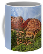 Zion National Park In Summer Coffee Mug