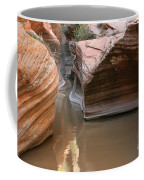 Zion Puddle Coffee Mug