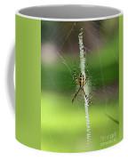 Zipper Spider Coffee Mug