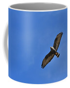 Zone-tailed Hawk Coffee Mug