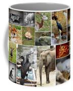 Zoo Collage Coffee Mug