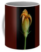 Zucchini Jester Coffee Mug