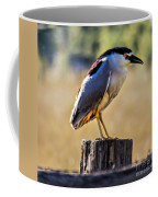 Black-crowned Night Heron Coffee Mug