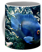 Fish Living In Denmark Coffee Mug