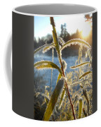 Frost On Willow At Sunrise Coffee Mug