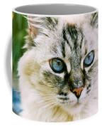 Pretty Blue Eyes--mia Coffee Mug