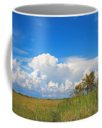 Shark River Slough - 1 Coffee Mug