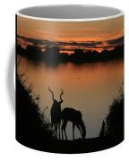 South African Sunset Coffee Mug
