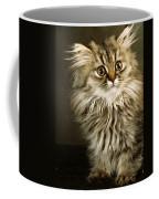 Startled Persian Kitten Coffee Mug