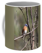 Sucarnoochee River - Bluebird Coffee Mug