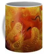 1 Cm Yellow Tube Polyp With A Small Coffee Mug