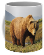 A Brown Grizzly Bear Ursus Arctos Coffee Mug