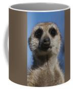 A Close View Of A Meerkat Suricata Coffee Mug