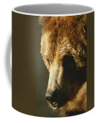 A Close View Of The Face Of A Grizzly Coffee Mug