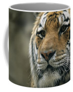 A Close View Of The Face Of Khuntami Coffee Mug
