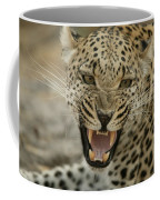 A Female Leopard, Panthera Pardus Coffee Mug
