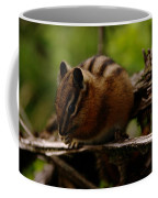 A Little Chipmunk Coffee Mug