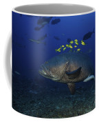 A School Of Golden Trevally Follow Coffee Mug