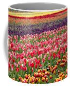 A Tulip Field Coffee Mug